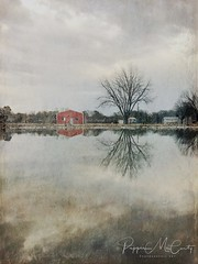 Puddle reflections. (Explored 1-22-18) (peppermcc) Tags: tree water sky field textured texas stackables stackablesapp reflections barn barns mobile photography cell phone iphone photo