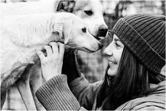 Chiara (andaradagio) Tags: andaradagio bianconero bw canon dog cane miglioramicodelluomo nadiadagaro rifugioohana bandaa4zampeumbria