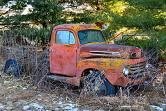 Hidden Treasure_186685 (rjmonner) Tags: ford rusted decay trees iowa midwest rural fix restore dilapidated antique old fender hood windshield wheels tires searchlight firedept door runningboard snow winter bouton