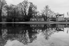 Two man on a bench (Zesk MF) Tags: bench black white mono zesk mirroring puddle reflection water wasser spiegelung street dark nature tree middle sigmaart nikon 18mm desolate trist