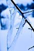 Taadaaaa, my first shot with my new camera (evakongshavn) Tags: hearts heartshaped heart love ice icyspikes icy snow winter winterwonderland new light blue nikon nikond7200 newcamera woohooo thrilled lol macrounlimited macroshot macro makro makroaufnahmen closeup