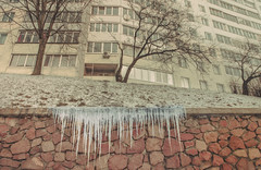 frost (Demipoulpe) Tags: winter frost urban city ice wall
