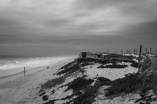Winter on the beach 1029