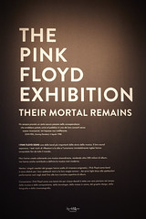 Pink Floyd Exhibition (ivan.cortellessa) Tags: pinkfloyd pink psichedelico musica floyd muro wall animal more dark side moon celebration comet learning fly wish were here division bel roma macro museo mostra