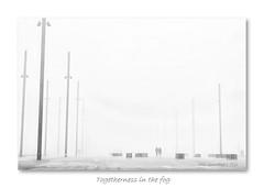 Togetherness in the fog (Oul Gundog) Tags: fog mist titanic slipway belfast northern ireland uk ulster together walk shipyard harland wolf