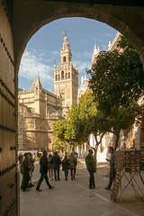 Giralda Tower (hildecarmans) Tags: cathedraldesantamariadelasede historicalplace monument frame portal andalusia andalucia espana spain cathedral tower giralda seville sevilla history old buildings