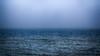 A single wave in an endless sea (ralfkai41) Tags: water minimalismus landscape minimalism ostsee meer oceean nature wasser waves balticsea landschaft waser wellen natur sea