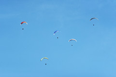 DSC_7405 (Alireza PourNaghshband) Tags: para parachuting flying blue sky minimalism minmal background japan