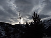 Silhouette (David R. Crowe) Tags: landscape light mountain nature outdooractivities plant scrambling silhouette tree kananaskis alberta canada