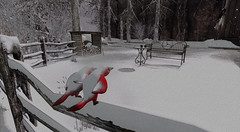 """Baby, it's cold outside."" (A Lone) Tags: second life secondlife sl virtual dark light shadow art firestorm gimp photography windlight photo sim 3d nature landscape scenery beauty romance serene winter winterscape snow birds virevolt"