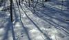(jtr27) Tags: dscf6622xl2 jtr27 fuji fujifilm xt20 xtrans xf 1855mm f284 rlmois lm ois kitlens kitzoom hike hiking whitemountains winter snow newhampshire nh newengland sugarloaf twinmountain