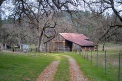 DSCF5326.jpg (RHMImages) Tags: path landscape decay nevadacounty rust manualfocus 35mm fujifilm trees rusted chinon vintagelens fuji road xt2 grassvalley barn fence