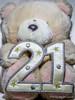 Day 21 (sly50) Tags: sly50 365project 365 project 2018 teddy 21 bear teddybear