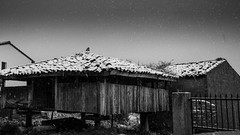 Nevada hórreo San Martín (@pabloralonso) Tags: nieve snow castrillon winter invierno asturias