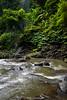 _DSC4803 (UdeshiG) Tags: bali indonesia asia waterfalls uluwatu seminyak tanahlot nikon ubud kuta paddy dogs balidogs travel traveltheworld