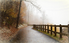 Foggy morning at the park....    Explore (Kevin Povenz Thanks for all the views and comments) Tags: 2017 november kevinpovenz westmichigan michigan ottawa ottawacountyparks ottawacounty grandravinesnorth trail wall fog foggy morning fence wet tree trees outside outdoors canon7dmarkii weather painting