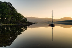 sunrise derwent water. (akh1981) Tags: nikon nisi nature landscape lakedistrict lake outdoors manfrotto mountains boat cumbria travel trees tranquil wideangle walking water derwentwater reflections sunrise