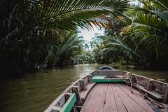 Exploring the Mekong Delta (dogslobber) Tags: vietnam travel visit explore wander wanderlust traveler traveling wandering can tho mekong delta asia boat coconut plants