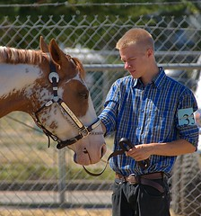 Showing His Horse (Scott 97006) Tags: guy fair horse animal competition present