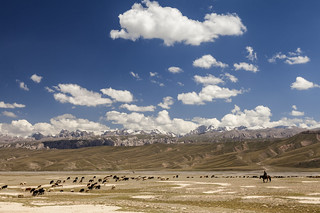 Shephard in the Tien Shan Mountains.