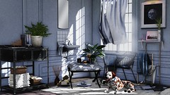 Some days are meant for you to just sit back and do nothing (Alexa Maravilla/Spunknbrains) Tags: haikei kustom9 {yourdreams} blush jian theepiphany cheekypea bazar mudhoney pixelmode secondlife sldecor interiordesign bathroom dogs pets sl