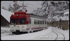 El Cercanías de montaña (02/2018) (aarongilp) Tags: agp aarongilp tren train treno zug comboio renfe cercanias madrid cercedilla cotos local regio 442 c9 puerto navacerrada