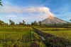 IMG_4431 (waynetywater) Tags: volcano red green garden nature luzon philippines ricepaddies historical dawn landscape asia adventure yellow mayon mountain ngc
