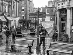 Fighting the rain in the streets of York. (steve.gombocz) Tags: olympus olympususers olympusamateurs olympuseurope olympuszuikodigitalclub olympusem5mark2 olympusomd olympusm1240mmf28 york yorkbw yorkblackandwhite exploreyork flickryork rain umbrella urbanstreet blacknwhite greyscale streetscene bw blackwhite bwphotos bwstreetscenes bwstreet flickrbw bwflickr blackwhitephotos blackwhitephotography flickrstreet blackwhitestreet bwstreetphotography streetlife street blackandwhite streetphotographs bwphotographs streetphotography bwphotography streetbw photosinblackandwhite bwpictures flickraddict blackandwhitephotographs purestreet out outandabout streetpictures streetphoto flickr exploreflickr zwartwit neroebianco sortoghvid mustavalkoinen svarthvitt svartoghvitt svartochvitt pretoebranco noiretblanc schwarzundweiss negroyblanco noirblanc schwarzweiss negroblanco pretobranco nerobianco
