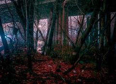 Foggy Night Under Route 208, Harristown Road, Glen Rock NJ (Steve Fretz) Tags: