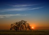 Fin y principio (una cierta mirada) Tags: sunset sun sky tree trees landscape nature blue orange green silhouette outdoors earth land clouds cloudscape minimal meco colors