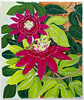 Passionflower (M.P.N.texan) Tags: paint painting flower flowers vine passionflower red acrylic acrylics botanical handpainted original mpn