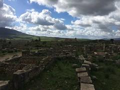 IMG_8864 (anisaheawad) Tags: morocco travel traveling nature digital meknes volubilis roman ruins