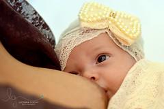 Amamentação (luciianagodoyphoto) Tags: amamentação neném baby babys bebê menina girl laço glamour cute fofa fofurice seios maternity mamãe amor ternura luciianagodoy love