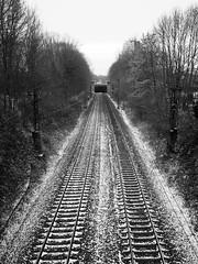 Dorstfeld_FH_Schnee_04 (Kurrat) Tags: dortmund dorstfeld winter schnee alterfriedhof einfarbig gleise gleis bahn fluchtpunkt baum bahnstrecke eisenbahn penf