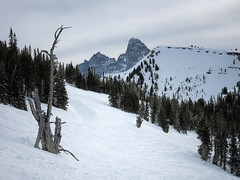 skiing Grand Targhee (maryannenelson) Tags: wyoming grandtarghee ski snowboard landscape winter clouds sky mountains pines tetons deadtree