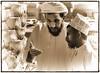 Omani Men at Livestock Sale in Nizwa Souq - Oman (stevebfotos) Tags: people souk reviewtodelete oman nizwa