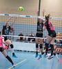 41170631 (roel.ubels) Tags: flynth fast nering bogel vc weert sint anthonis volleybal volleyball indoor sport topsport eredivisie 2018 activia hal
