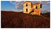 video ricognizione - casale abbandonato (drone4you) Tags: n casale pomezia drone