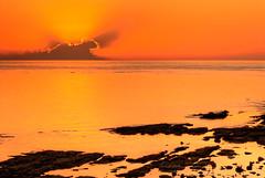 New Day, Nassau, Bahamas (shanepinder) Tags: morning early dawn sunrise horizon horizontal shore seashore ocean sea water clouds sky rocks serene serenity peace peaceful nassau newprovidence bahamas