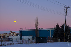 Day 365: This Is The End (Paul Howard Photo) Tags: ifttt 500px landscape outdoor cityscape moon snow olympus mirrorless landscapephotography alberta 365project reddeer omdem1 yearend olympuscamera paulhowardphotography olympuscanada paulhowardphoto paulhowardphotocom protectedbypixsy capture4cubes