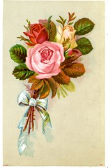 nlm_nlmuid-101704898-img (National Library of Medicine - History of Medicine) Tags: nationallibraryofmedicine imagesfromthehistoryofmedicine ihm historyofmedicinedivision stillimage chromolithograph nicanorboletperaza nonprescriptiondrugs advertisements illustration women pildorastocologias bouquet rose whitebowtie ingredients body health drugs tradecard