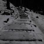 Bohinj, les cascades Savica1801011252 thumbnail