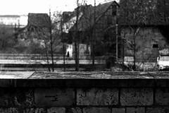 The world is a painting (Leica M6) (stefankamert) Tags: stefankamert painting bokeh dof leica m6 leicam6 summicron summicrondr noiretblanc noir bw baw film analog grain kodak trix balingen city tree wall house bridge people blur blurry