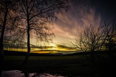 """Übergang von der """"Goldenen"""" zur """"Blauen"""" Stunde (uschmidt2283) Tags: bäume licht sonneuntergang spiegelungen"""