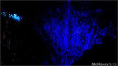 Enchanted Gardens 2017 - 136 (mchenryarts) Tags: arcen dunkelheit entertainment event events farbe fotojournalismus kasteeltuinen laternen licht lichtinszenierung lichtspektakel niederlande parkleuchten photojournalism schloessgaerten show garten laser lasershow