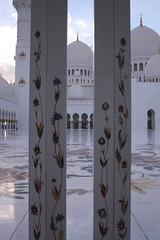 _MG_4805 (David_Hernández) Tags: arab emirates