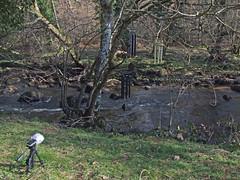 Recording wind chimes by River Teign (Philip_Goddard) Tags: europe unitedkingdom britain british britishisles greatbritain uk england southwestengland devon dartmoornationalpark drewsteignton teignvalley teigngorge riverteign recording sonypcmm10 windchimes