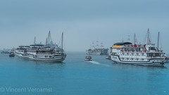 baie de Ha Long (ver-20100) Tags: asia vietnam northvietnam halong mer sea seabay