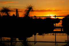 Three rivers end. (alan.irons) Tags: reflections silhouette water river drain sunset axholme isle keadby waterways rivertrent northlincolnshire trees drainage eos1dxmk2 ef2470f28llusm canon fullframe british england 2018