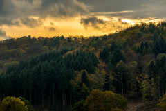 dark and mystic Forest (Herr Nergal) Tags: fz1000 lumix panasonic nunkirchen hochwald saarland landscape landschaft wald forest trees bäume düster dark feuer fire mystisch mystic creepy eerie green grün 7dwf sky clouds heaven wolken